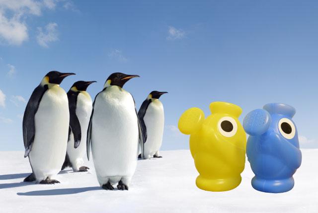 南極。日本のポップカルチャーが生んだ新形態のペンギンに、既存のペンギンも戸惑いを隠せない