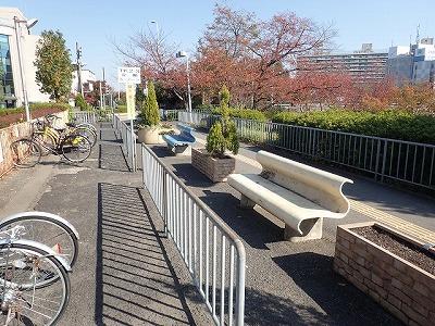 セアカゴケグモの多い大阪府のとある街。