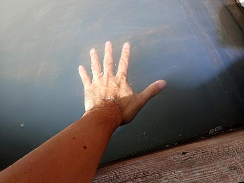 駅にある足湯にとりあえず手を入れてみたら、ただのお湯じゃないんだよ感がすごかった。これが横綱の実力か。