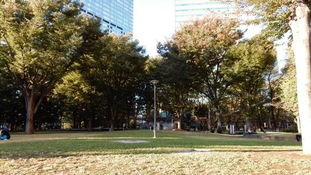 公園に来た。