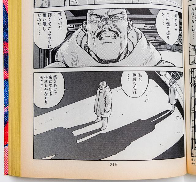 同215ページ。ところでこのコミックスの紙ってすごく黄ばむよね。