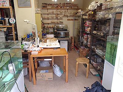 水槽がある以外、見た目は普通の作業部屋。