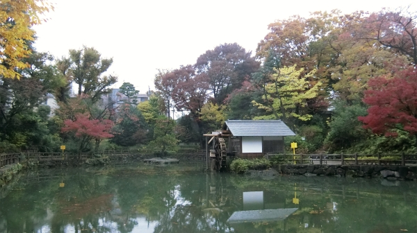 きれいな紅葉に包まれるように池がある。近くにこんな公園があるのはうらやましい。