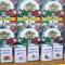 高崎のパスタ18種類がそろうイベント(ほぼ)全食レビュー
