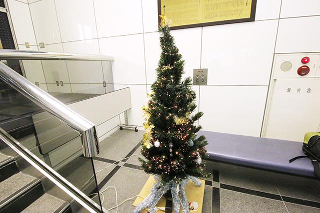 12月だけに、クリスマスツリーがお出迎え。