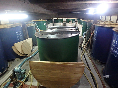 仕込みの最中なので手前の階段から撮影。1シーズンにこのタンクで4、50本ほど仕込みます。