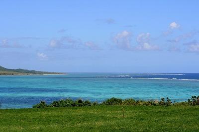 沖縄の海。この青さは泳ぎたくもなるね…。