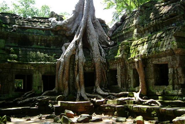 ガジュマルの根に覆われていることで知られる「タ・プローム」