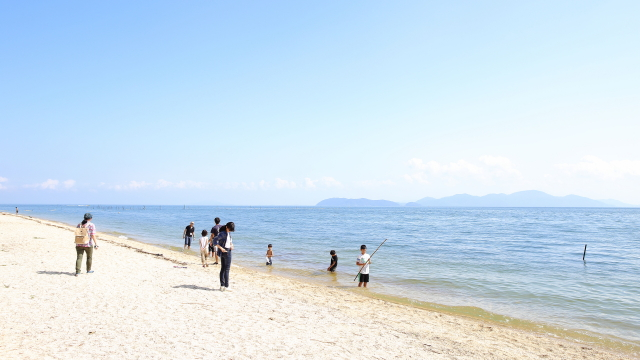 この日は10月だったのに最高気温31度、ピーカン照りの暑さで絶好の水浴び日和。砂浜の松林ではセミまで鳴いていた。
