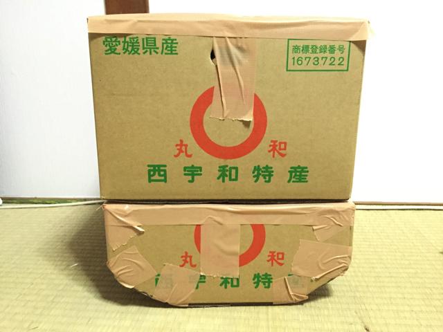 2つの箱を顔っぽい輪郭にし