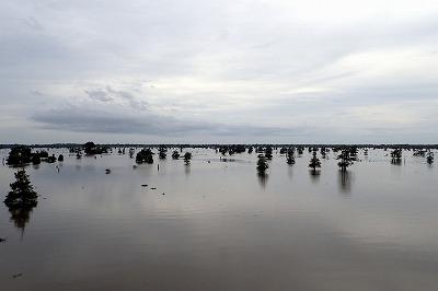 見渡す限りの湿原…。日本ではまず見られない絶景だ。