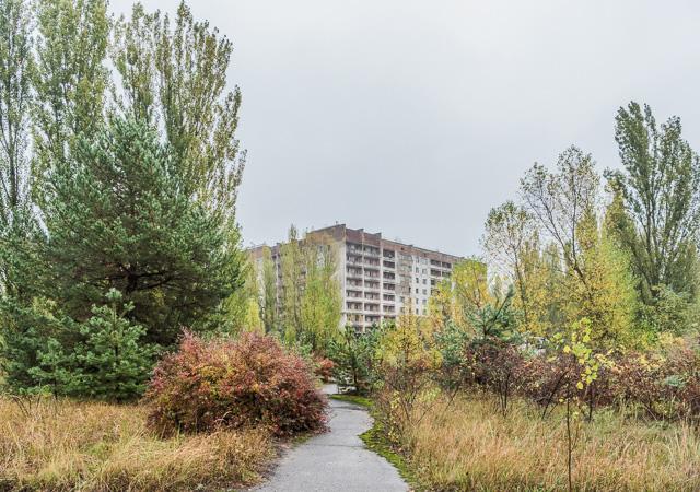 で、思った。「原発事故で廃虚になった街に行った」で紹介したチェルノブイリ近くの都市プリピャチに建っていたこのかっこいい団地。うち捨てられて30年。