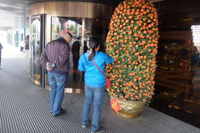 ホテル前にも巨大みかん。観光客は気になるわけで