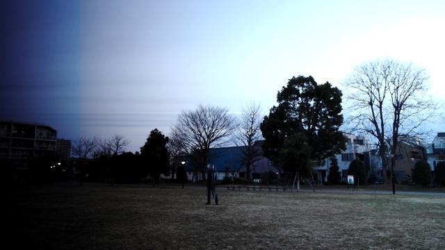 近所の公園の朝の風景