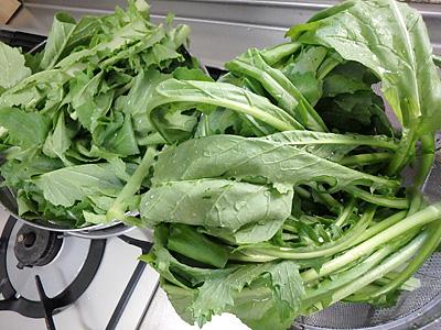 大ざる2杯分の青菜。この後どんどん小さくなっていく。