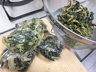 塩茹でした大根の葉をこんな風に冷凍しておいて、みそ汁に入れたりすることは今まであった。これからは発酵させてからにしようか。