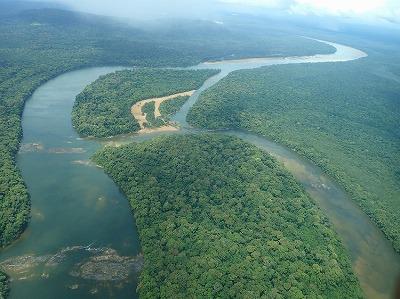 デンキウナギが潜むアマゾン奥地の川