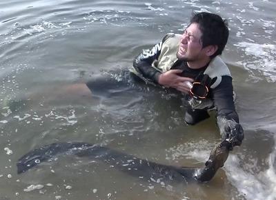 電撃でショック死というより、水中で身体の自由を奪われて溺死するケースが現実的だという。デンキウナギは一箇所に集団でたむろしていることも多いらしく、一匹に感電すると連鎖的に複数の個体から長時間にわたって電撃を喰らい続けることもあるとか。…恐ろしすぎる。