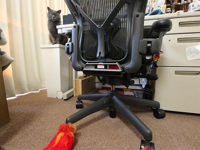 仕事用椅子リアン。これに座って未来のクライアントまで仕事もらいに行きたい。