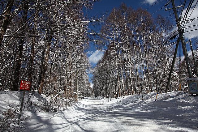 まっすぐ続く白い国道。