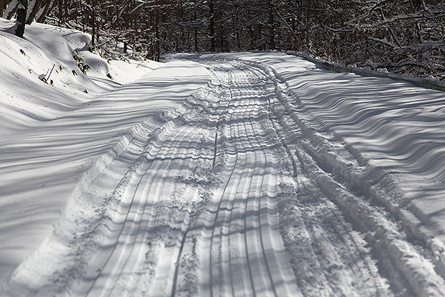 スノーモービルの跡。圧雪されていて歩きやすい。