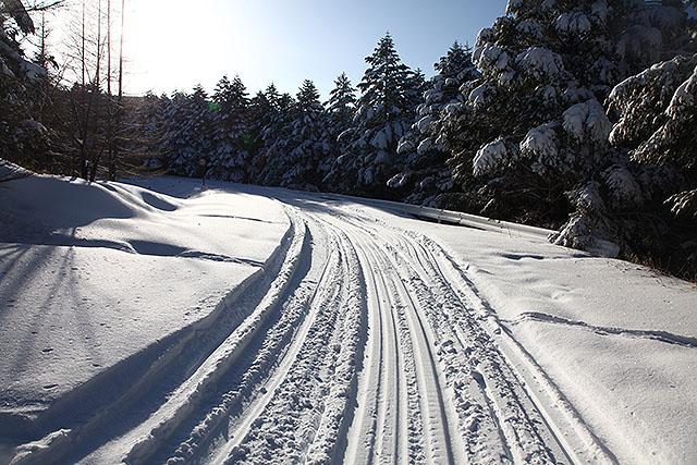 まだスノーモービルの走行跡があり、歩きやすい。