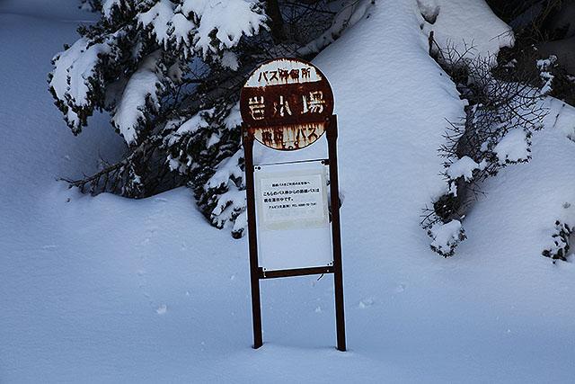 廃路線みたいなバス停だが、無雪期はちゃんと走っている。