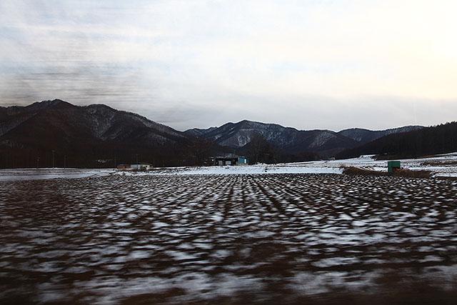 夏はレタス畑になります。
