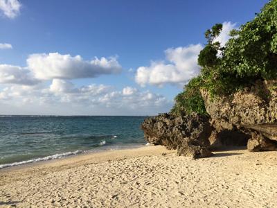 沖縄の海。オニヒトデをはじめ、多様な生物を支えているのがサンゴなのだ。