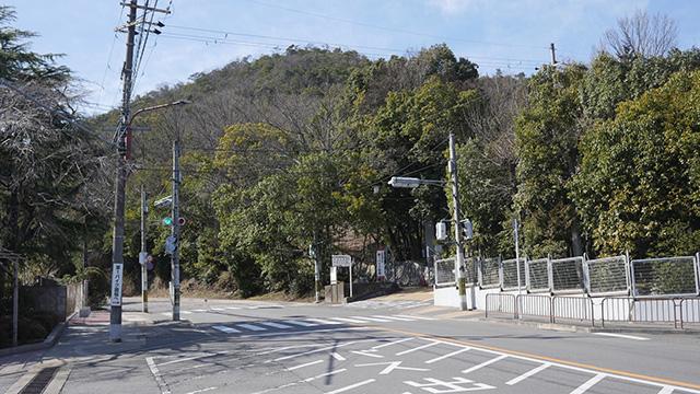 立命館大学の裏に衣笠山がある