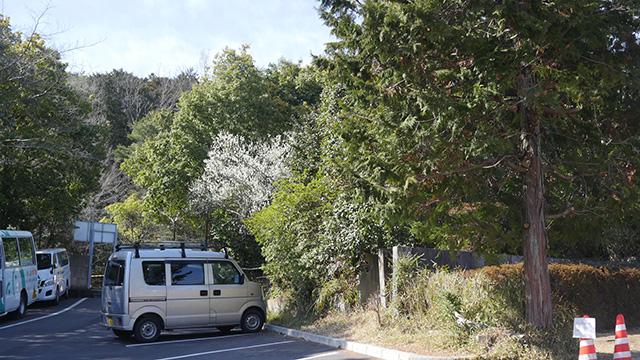 「衣笠山どれですか?」と聞いて案内された場所。これが追い求めていた衣笠山かあ。思ったよりも駐車場だなあ