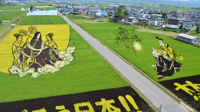 2011年の田んぼアート