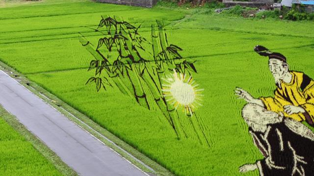 コラージュ技法を駆使した田んぼアート