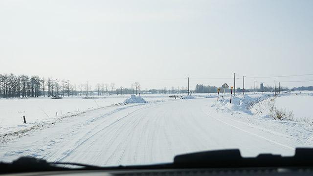 道も雪景色!