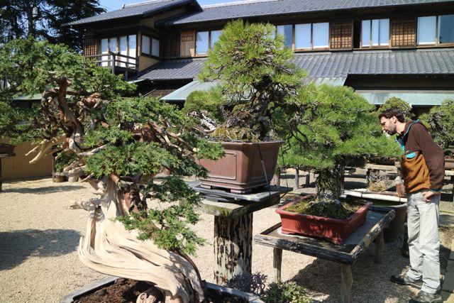 日本人よりも外国人のお客さんがたくさんいた。