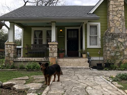 Airbnbでとった宿は犬までついていた