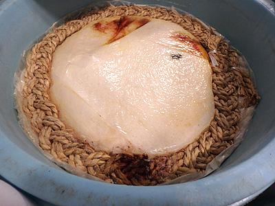 重石とフタを外した米を入れて漬け込み中の物。周りについているのは密封用の縄。鮒寿司の香りがする。