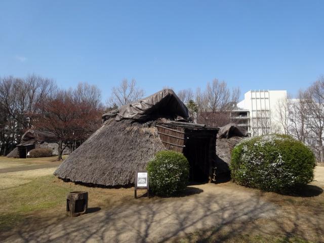 竪穴式住居の後ろにショッピングモールがある