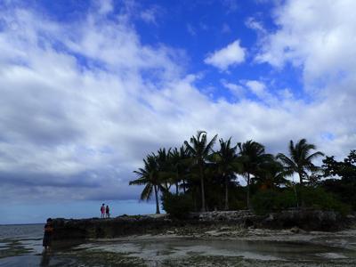 やってきたのはボホール島。パラワン島ほど浸透してはいないが、ここでも一部の漁民はフナクイムシを食べるという。