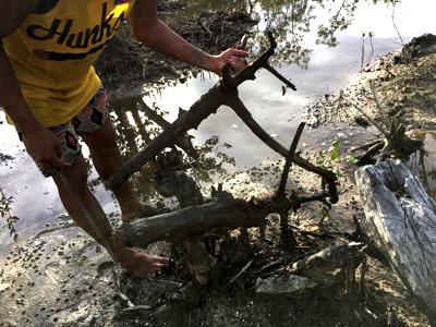 足元に転がる流木を集めていく。これにフナクイ虫が入っているというのだが…。