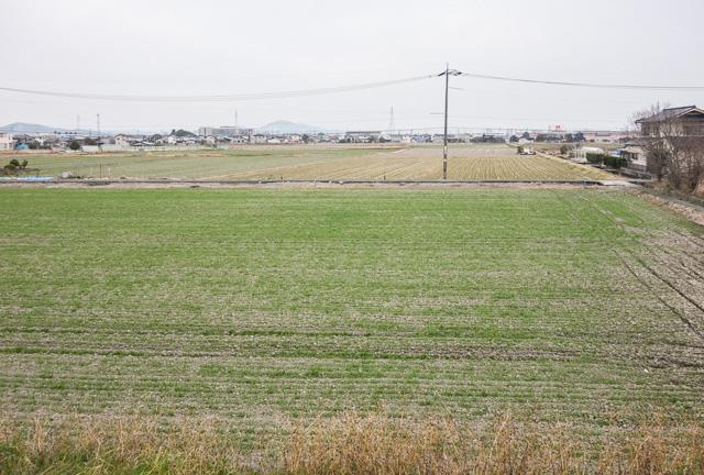 旭川の土手から産業道路(暫定)方向を見た光景。いや、確かにこれも一次