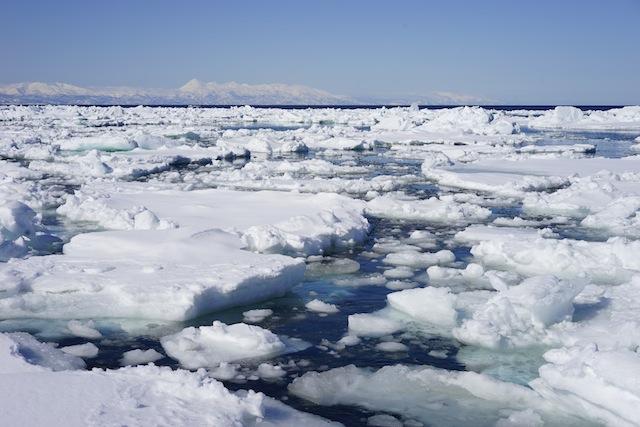 氷たちが微妙に動き、ぶつかり、ポジションを取り合っている。湘南国際マラソンのスタート地点のようなにぎわい。