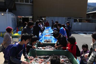 駐車場にはなんと大量の深海魚たちが運び込まれていた。