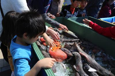 その一方で深海生物を触りまくる子どもたち。物怖じなんてしない。つついて、掴んで、持ち上げて、最終的には持って帰る子も。