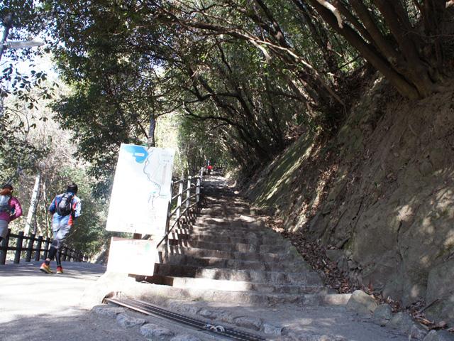 右の階段がきつそうだけど、雌滝は左の道でいいみたい