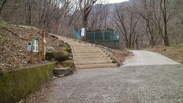 きれいな木の階段をのぼって橋の上を目指そう。