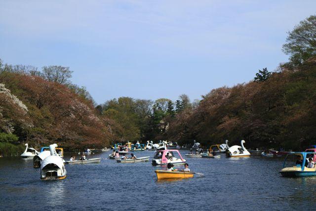 井の頭公園と言えばボートという印象が僕にはある。