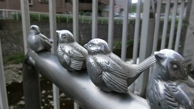 CDのジャケットみたいな食べられない鳥たち。