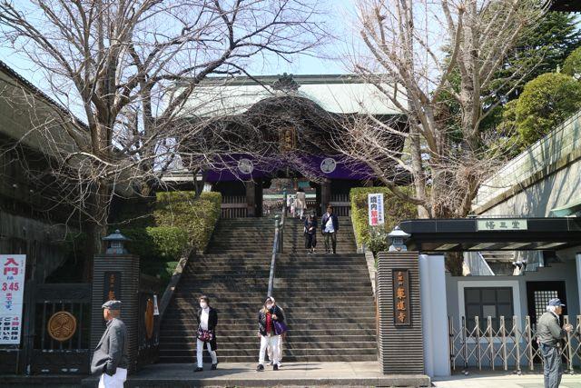 いよいよ日本で3番目に大きい大仏を見に乗蓮寺(じょうれんじ)へ。