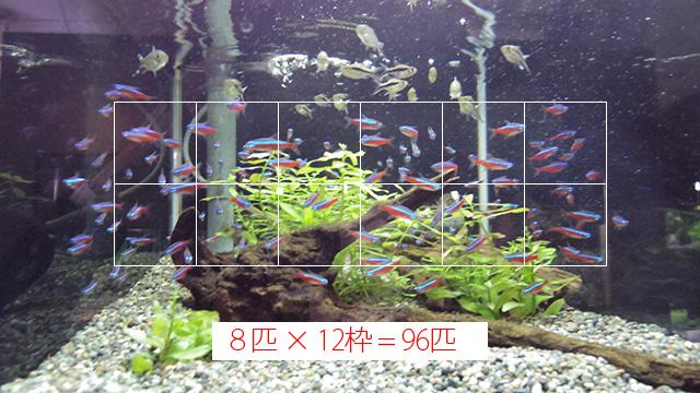 魚群に枠がいくつ入るか考える